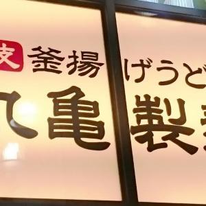 【丸亀製麺】うどん1杯買うと、もう1杯無料!テイクアウトもOK。
