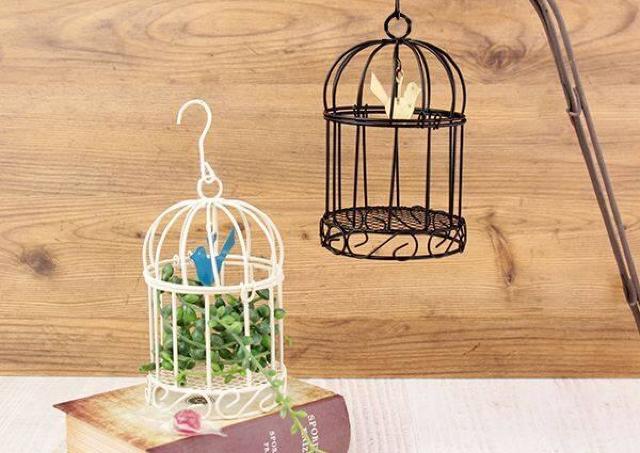 カルディの「鳥かごキャンディ」可愛すぎ!インテリアとしても使えるよ。