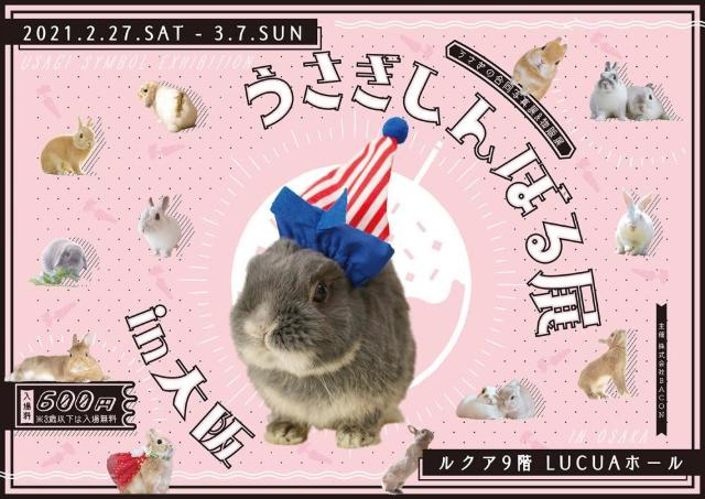 可愛いうさぎの写真&グッズに出会える「うさぎしんぼる展in大阪」