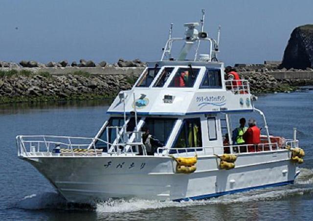 オホーツクの海原でクジラやイルカをウォッチング
