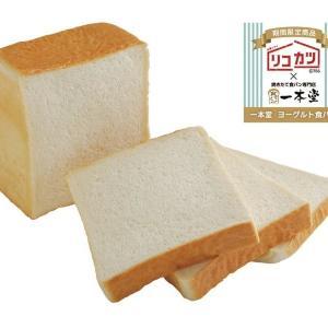 トレンド先取り?新作ドラマ「リコカツ」の「ヨーグルト食パン」気になる~。