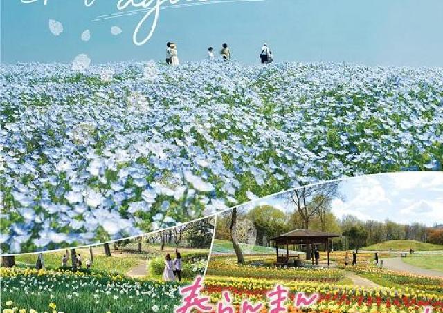咲き乱れるお花のリレー!春らんまんフェスタ開催中