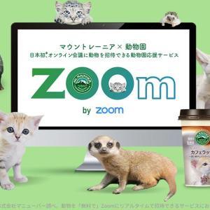 動物たちと「オンライン会議」できちゃう!?動物園からの癒しプレゼント、素敵すぎでは?
