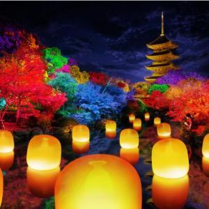 世界遺産の東寺が光のインタラクティブなアート空間に