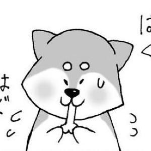 【漫画】まいにちいぬけん vol.7